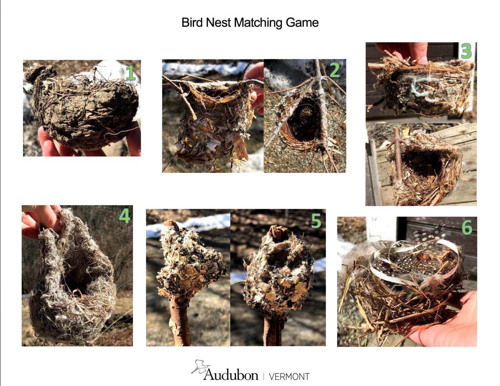 nest matching game