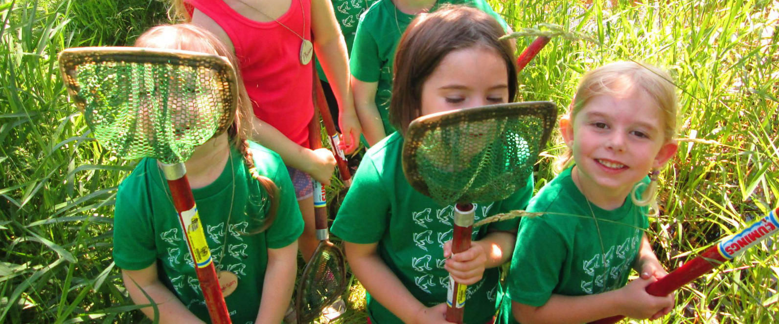 Summer Camp Audubon Vermont blog