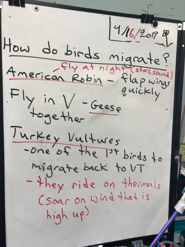 migration questions