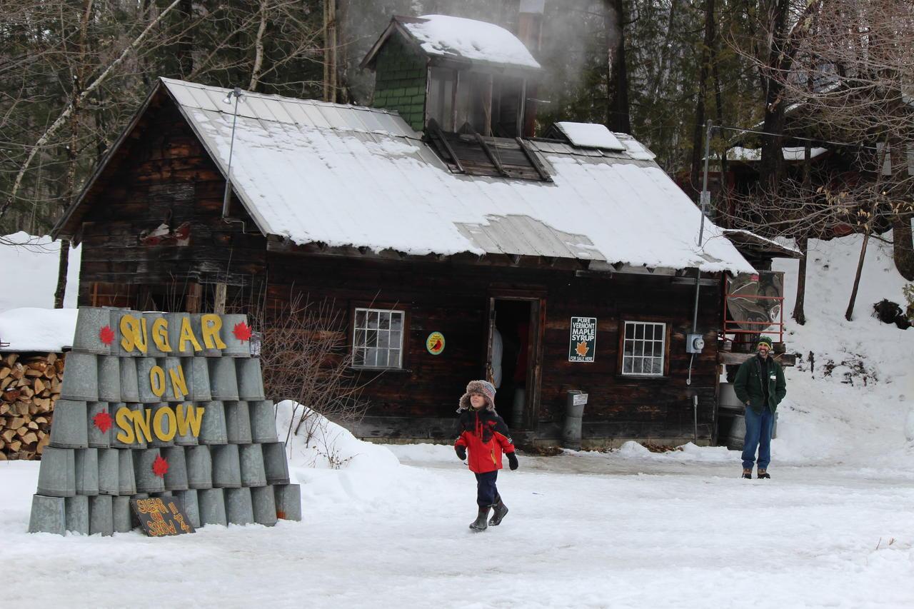 Sugar on Snow Party | Audubon Vermont