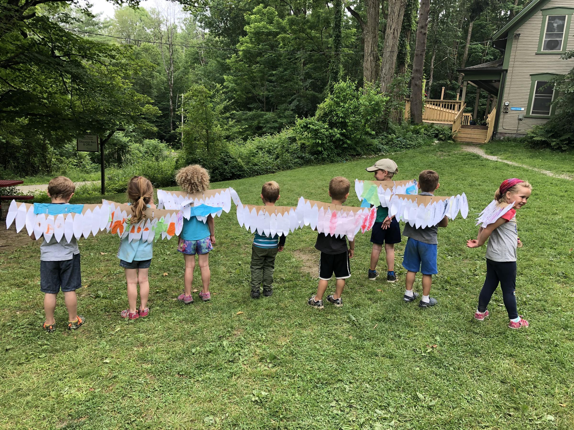 summer camp bird wings
