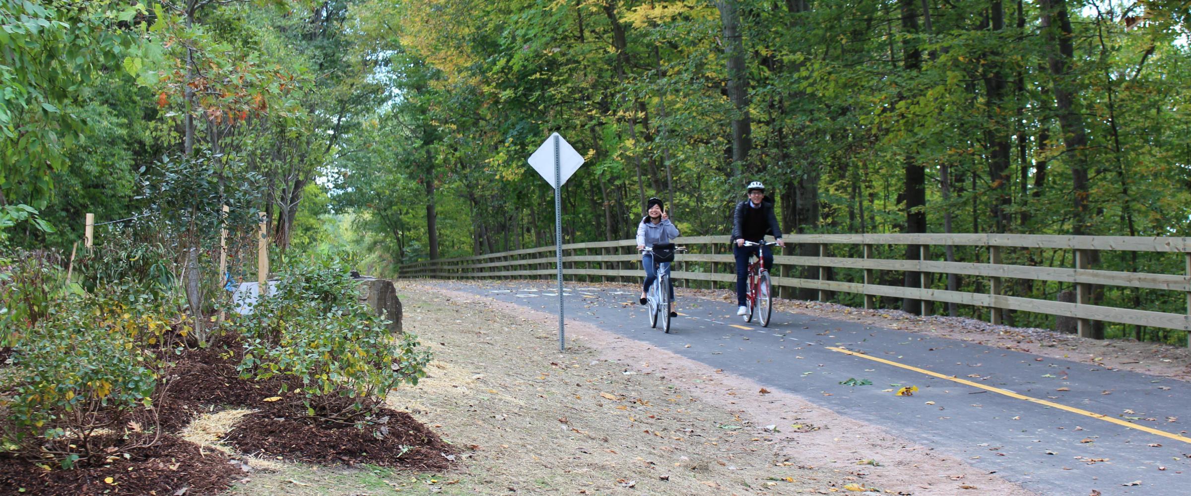 Plants for Birds: Burlington - Greenway (Bike Path)