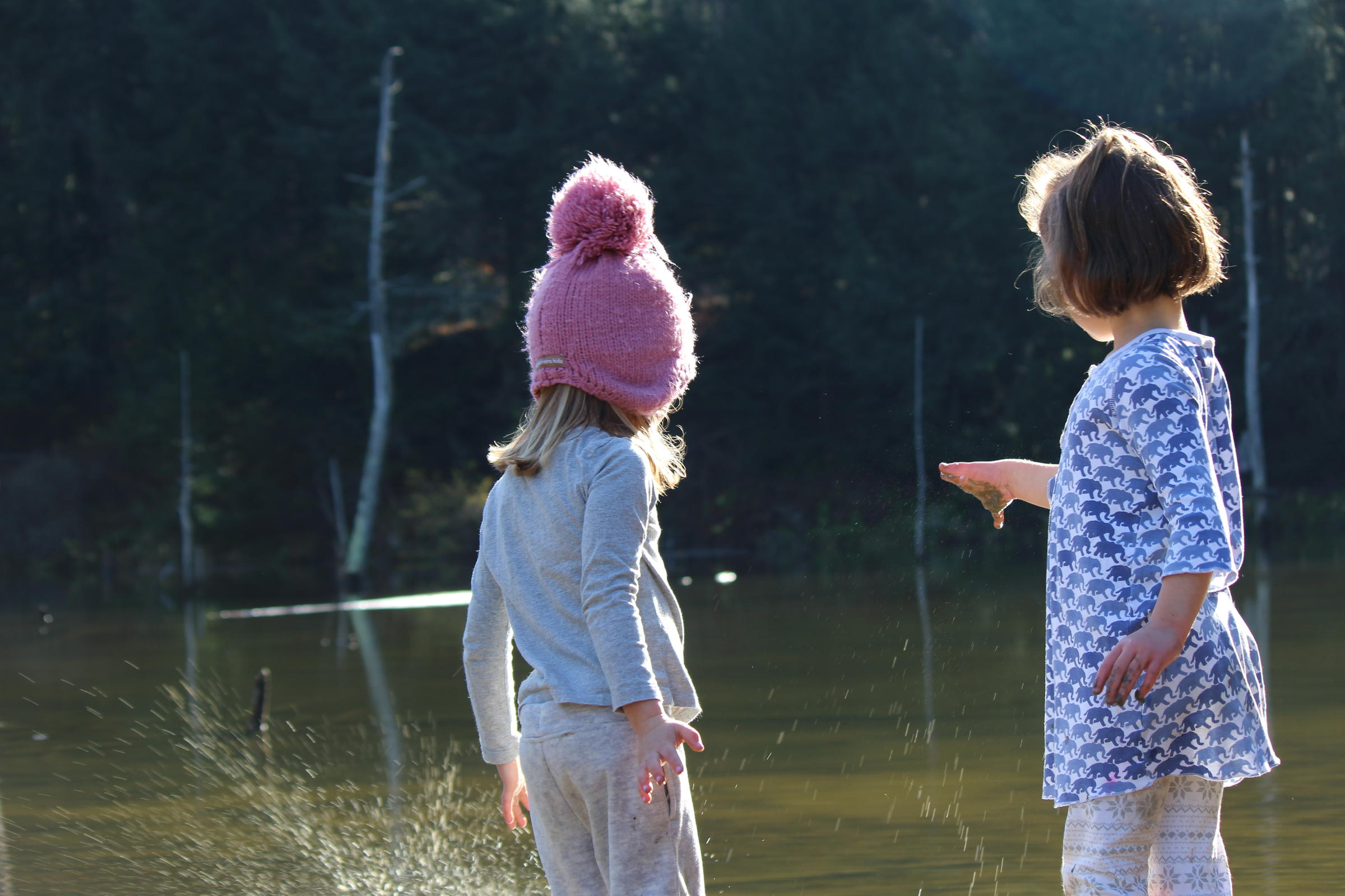 Watery World - Audubon Vermont