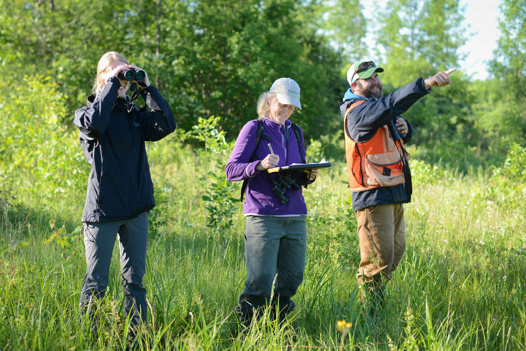 Conservation audubon vermont for Vermont fish and wildlife jobs